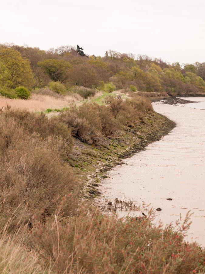 Rocas que alinean el borde de una cable de cuchara de la costa con un cielo y un R claros foto de archivo