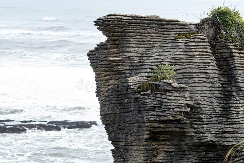 Rocas y sopladuras, Punakaiki Nueva Zelanda de la crepe imagen de archivo libre de regalías