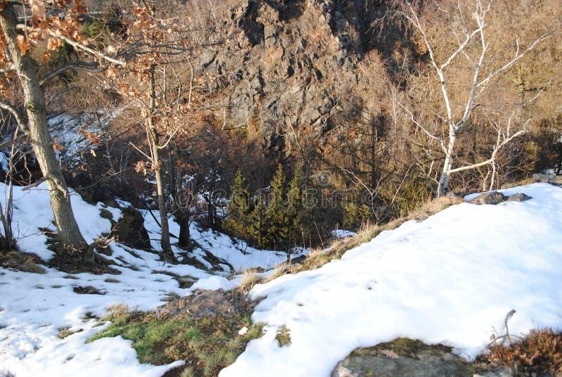 Rocce, alberi e neve fotografie stock libere da diritti