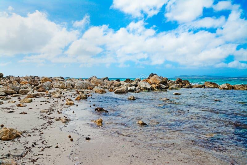 Rocce dal mare in Alghero fotografie stock libere da diritti