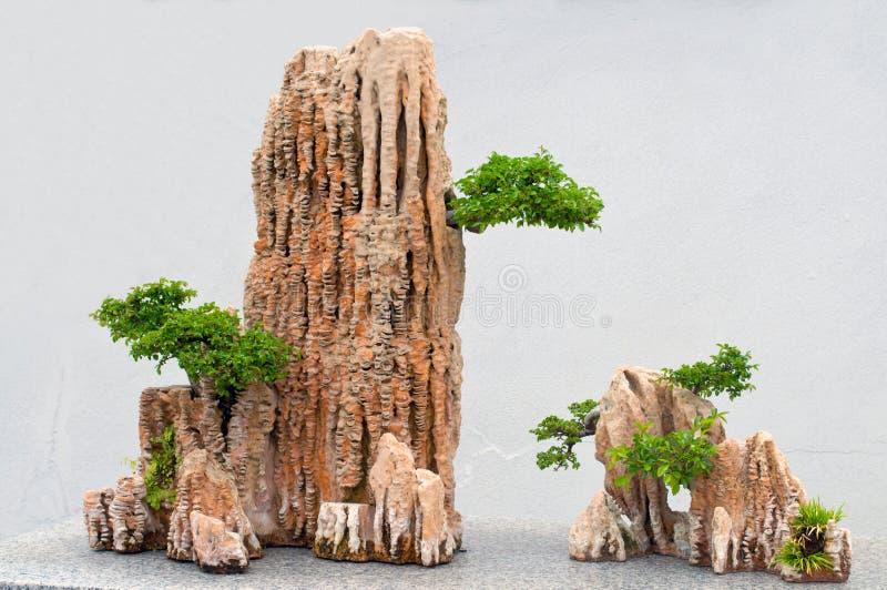 rocce dei bonsai fotografia stock