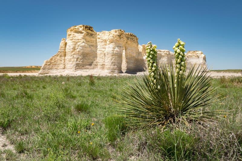 Rocce del monumento, Kansas Piramidi delle pianure fotografia stock libera da diritti