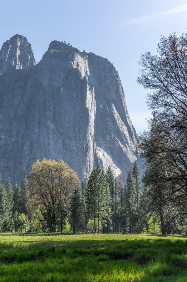 Rocce della cattedrale al parco nazionale di Yosemite, CA, U.S.A. fotografia stock libera da diritti