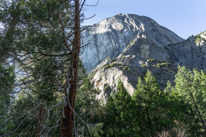 Rocce della cattedrale al parco nazionale di Yosemite, CA, U.S.A. fotografie stock