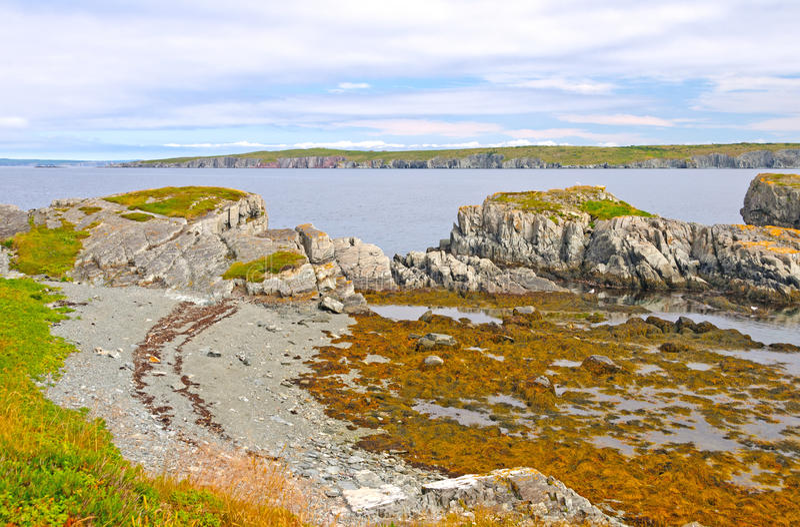 Rocce di Coatal a bassa marea fotografie stock