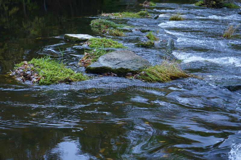 Rocce e Moss Just Above una diga immagine stock
