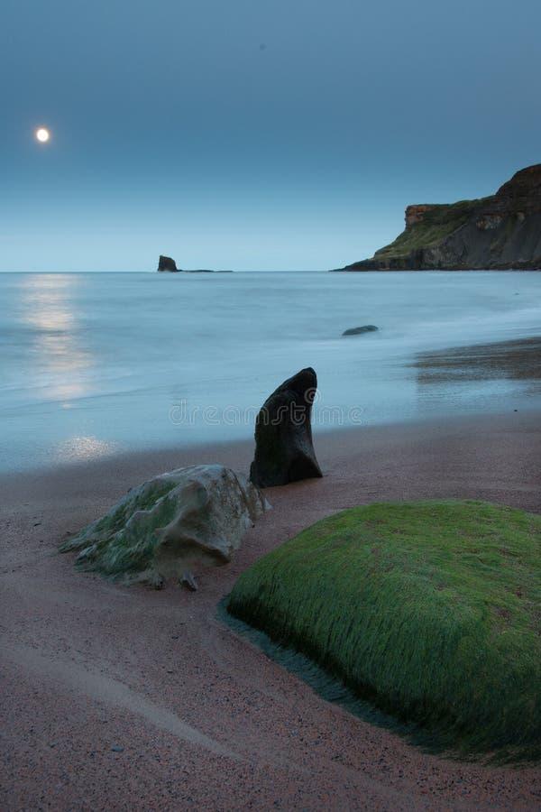 Rocce a forma di del mare nella luce della luna immagini stock