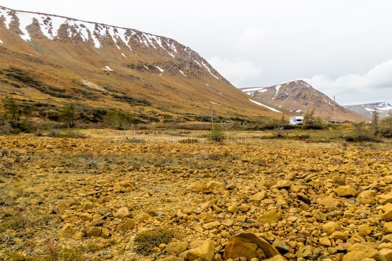 Rocce gialle notevoli degli altipiani, Gros Morne National Par fotografia stock libera da diritti