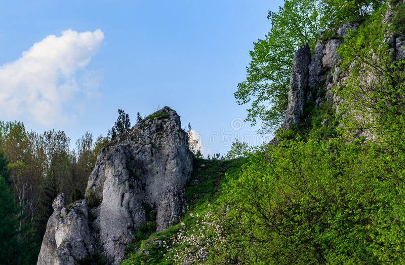 Rocce nel parco nazionale del ³ w di Ojcà fotografia stock