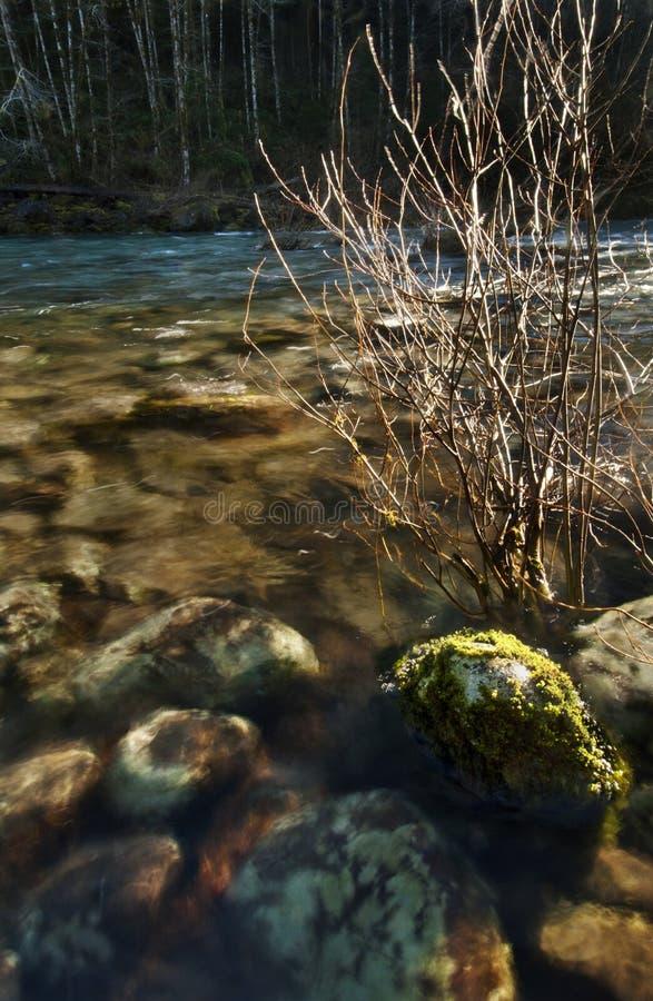 Rocce soleggiate subacquee al tramonto fotografia stock