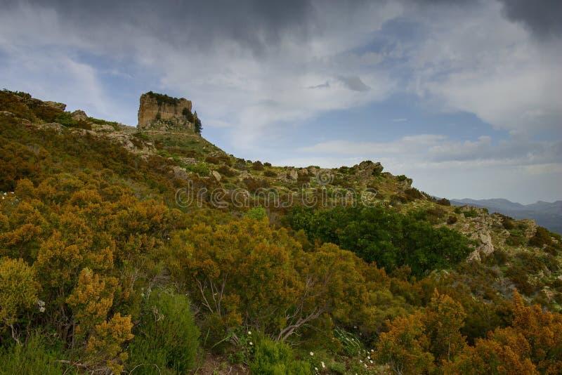 Roccia del calcare della liana della Sardegna Perda e fotografia stock libera da diritti