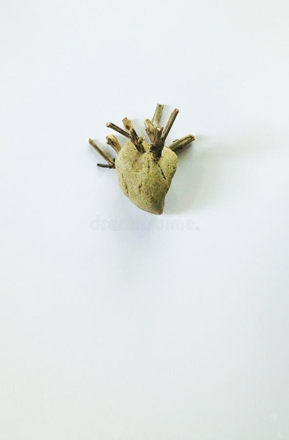 Roccia del cuore fotografie stock