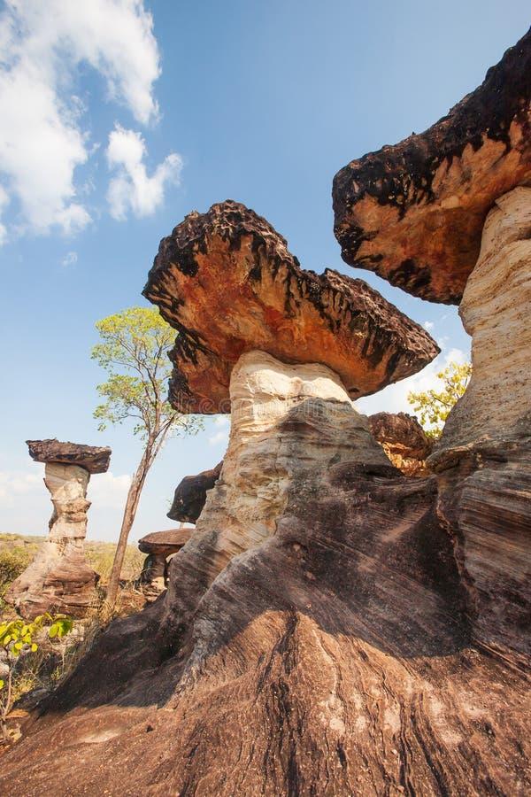 Roccia del fungo Forma di fantasia della pietra antica con le foreste primitive, nei periodi molto antichi Parco nazionale di Pha immagine stock