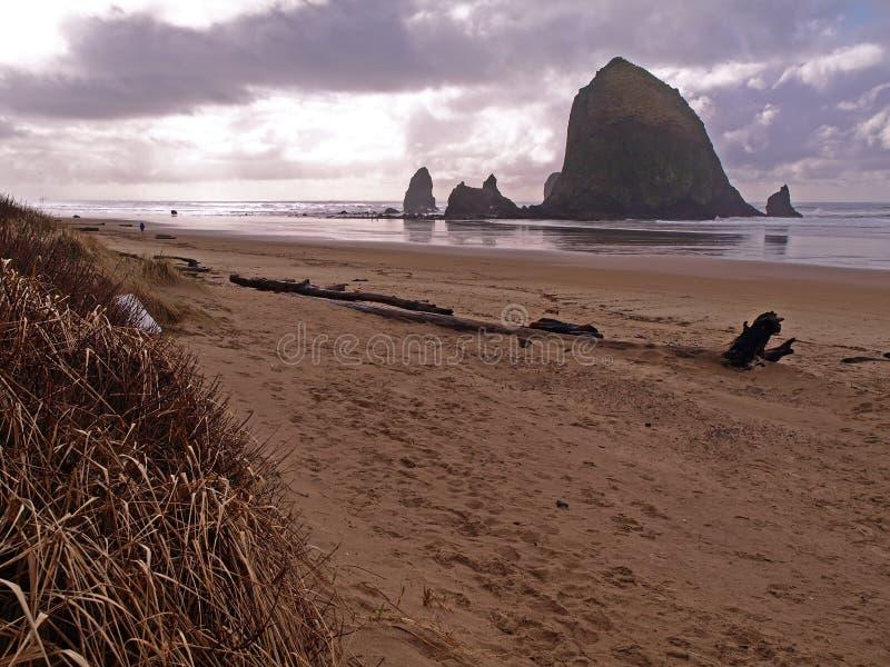 Roccia del mucchio di fieno nel litorale dell'Oregon immagini stock