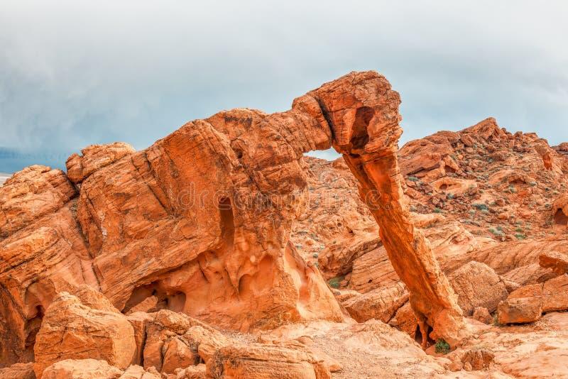 Roccia dell'elefante in valle del parco di stato del fuoco nevada U.S.A. fotografie stock libere da diritti