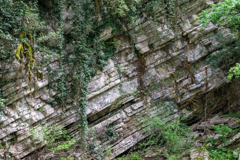 Roccia della pietra stratificata invasa con erba e muschio immagine stock