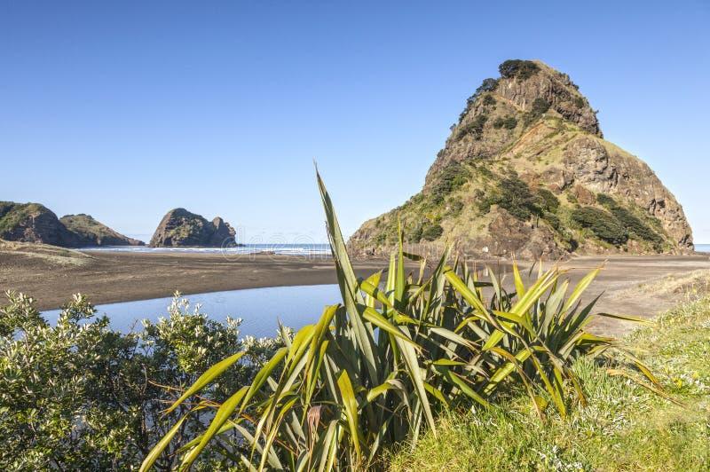 Roccia della spiaggia e del leone di Piha immagine stock libera da diritti