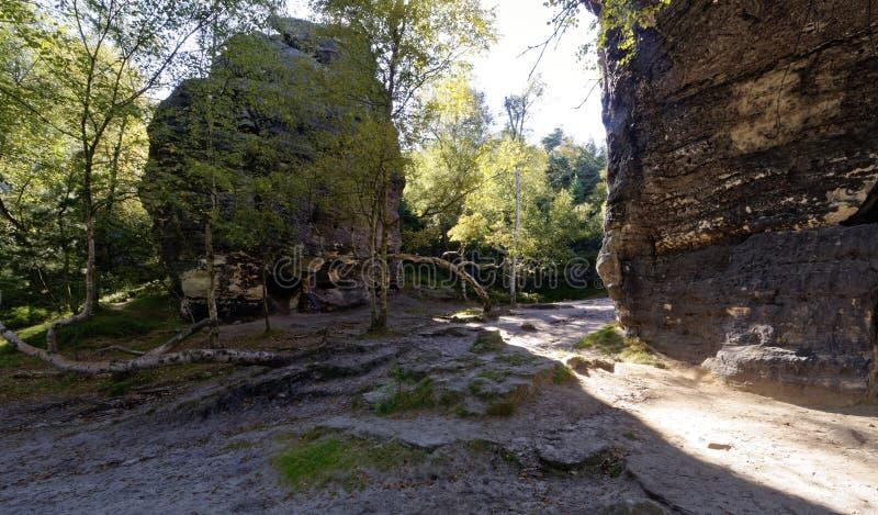 Roccia distaccata fra gli alberi immagine stock