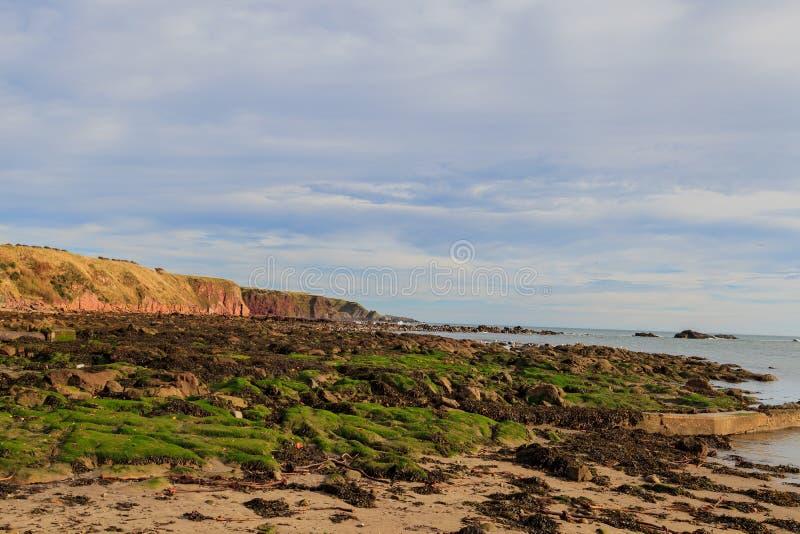 Roccia e spiaggia alla baia Aberdeenshire di Stonehaven fotografie stock