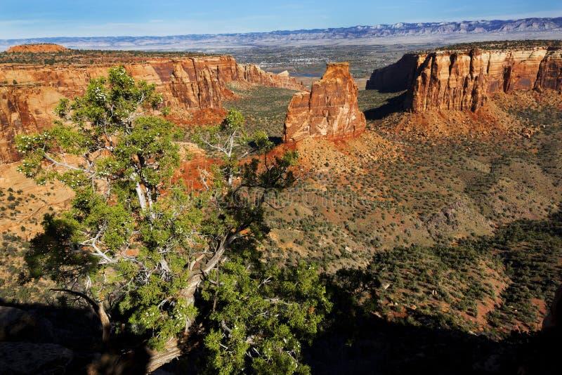 Roccia ed albero di indipendenza fotografie stock libere da diritti