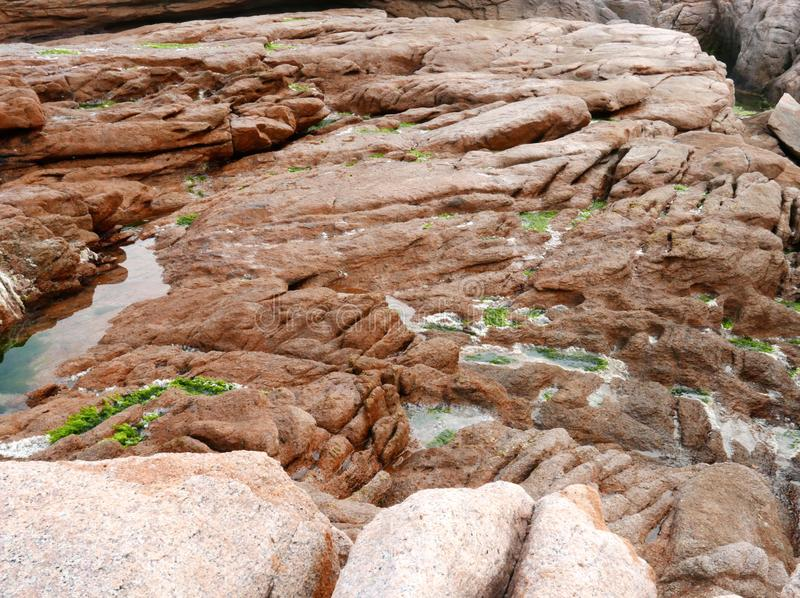 Roccia ed alghe del granito nella costa di Shek O in Hong Kong fotografie stock