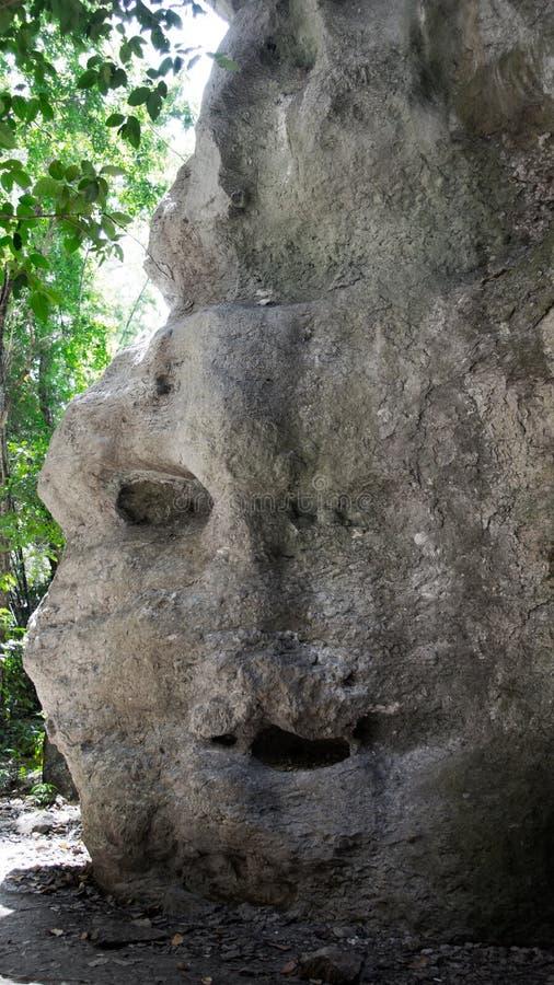 Roccia naturale grigia al giorno che assomiglia ad un fronte con la bocca dell'occhio ed al naso in Flores fotografia stock