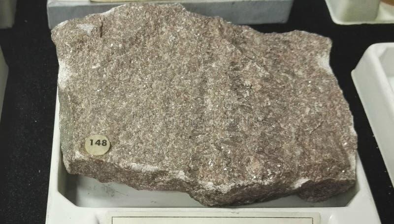 Roccia sedimentaria di marmo del calcare immagini stock