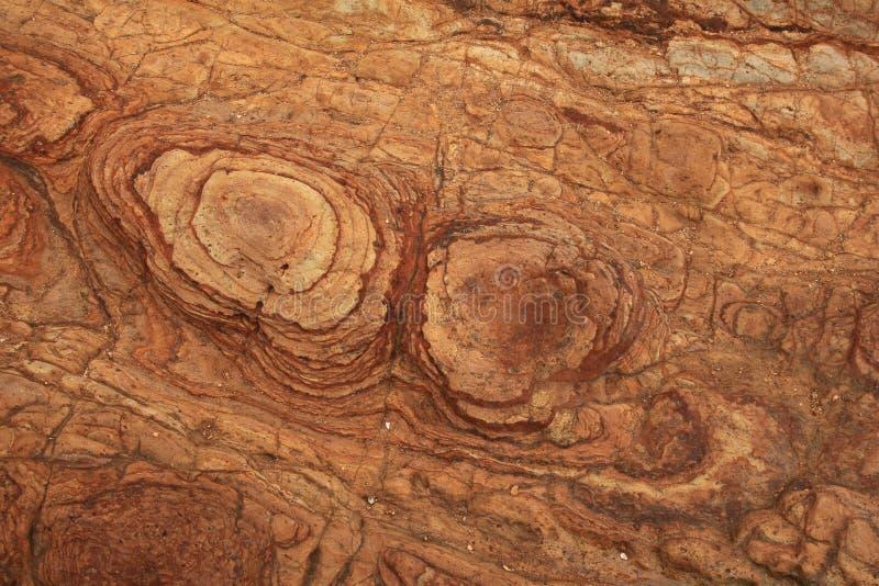 Roccia vulcanica trovata sulla penisola delle banche immagini stock