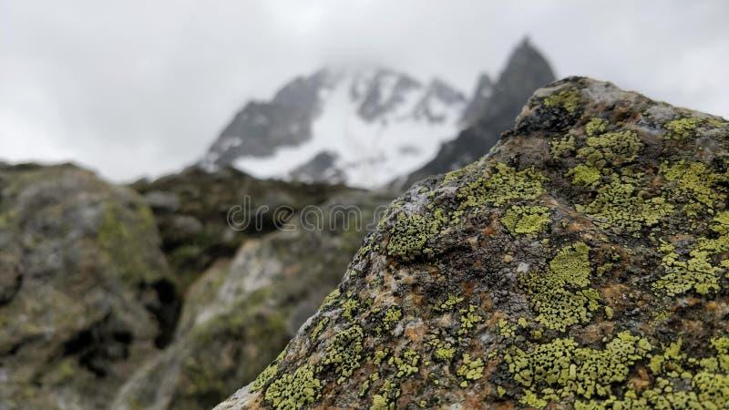 Rocha coberta no musgo com as montanhas cobertas com a neve, senery de Manali, humtapass, usados para o fundo, desktop, wallpaper imagens de stock royalty free