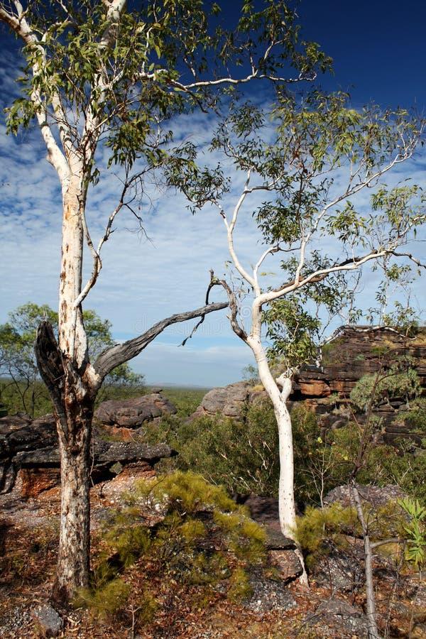Rocha de Nourlangie, Kakadu imagens de stock royalty free