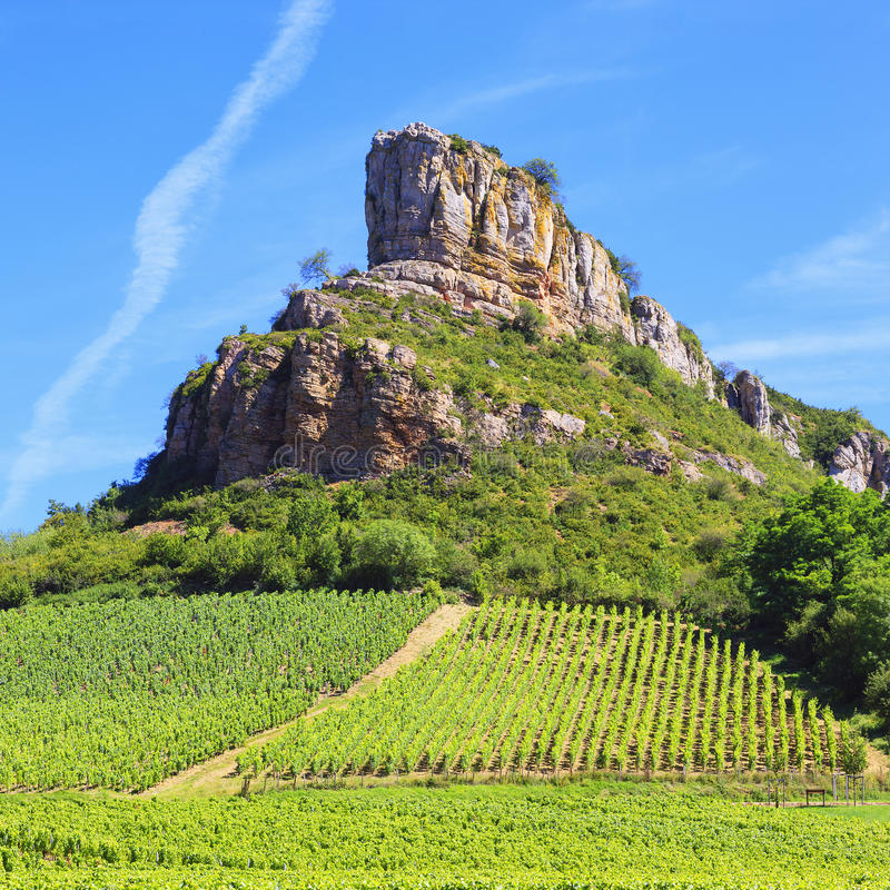 Rocha de Solutre com os vinhedos em Borgonha imagens de stock