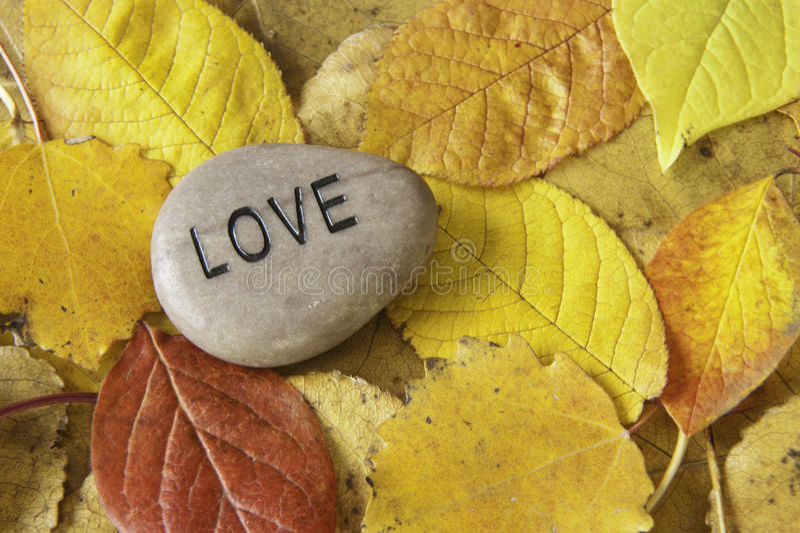 Rocha do amor com folhas da queda fotografia de stock