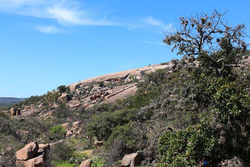 A rocha encantado com esfrega o carvalho fotos de stock