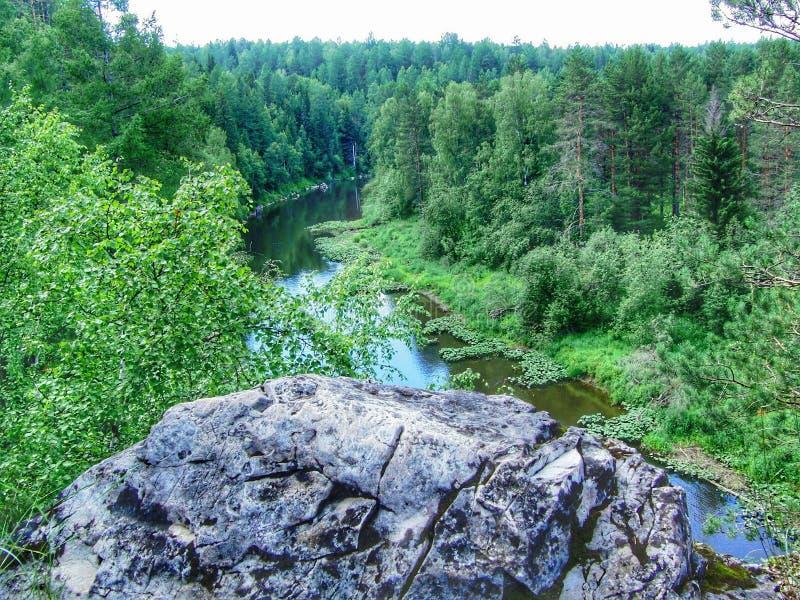 Rocha grande na floresta fotografia de stock