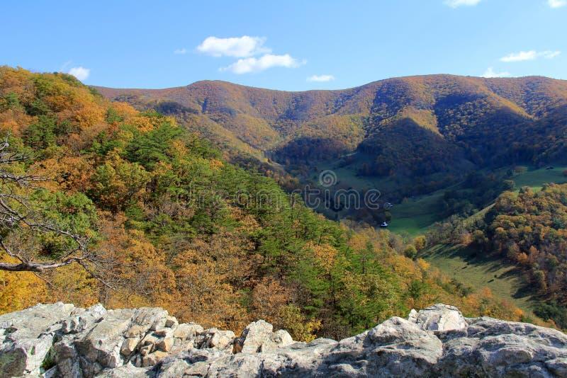 Rocha na queda - montanhas apalaches do Seneca - West Virginia, EUA fotos de stock