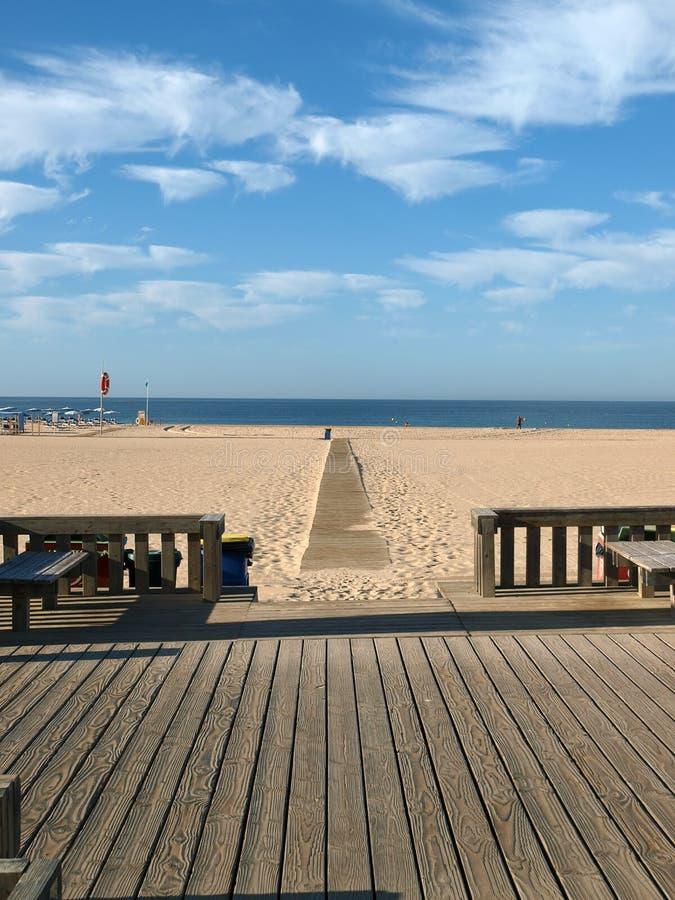 rocha praia portimao algarve da стоковые изображения rf