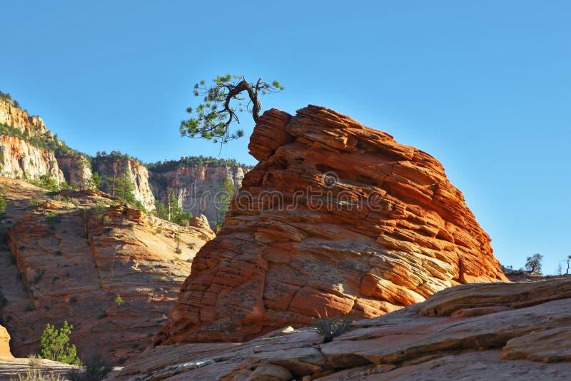 A rocha redonda do sandstone vermelho foto de stock