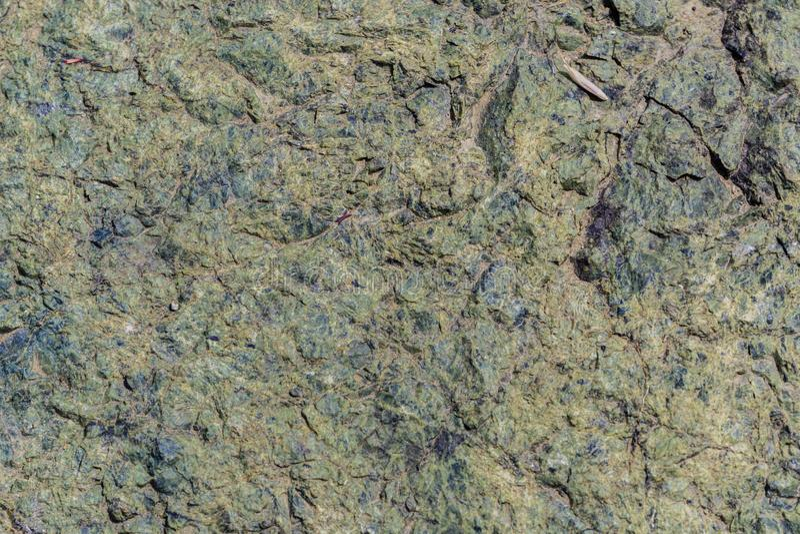 Rocha serpentina encontrada nos montes do sul San Francisco Bay, Califórnia imagens de stock