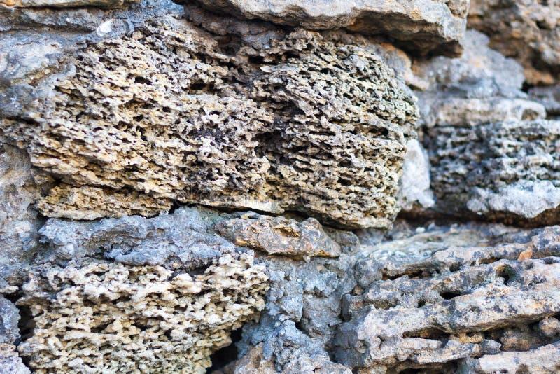 Rocha vulcânica Close up de pedra da textura com matiz branco e marrom Foco seletivo foto de stock royalty free