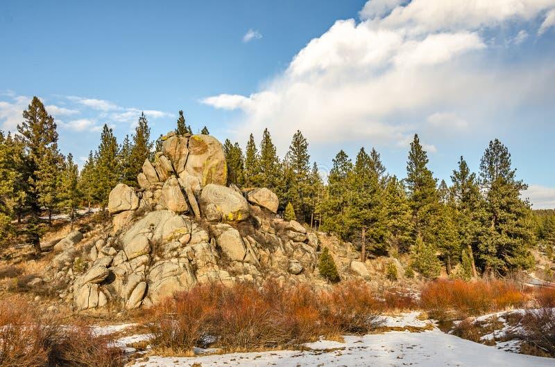Rochas, árvores, galhos, e neve fotos de stock royalty free
