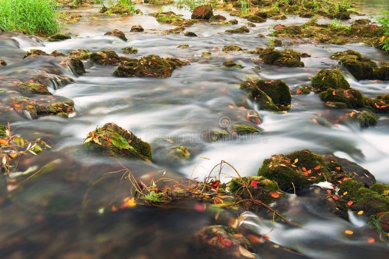Rochas cobertas com o córrego do musgo e do rio imagem de stock