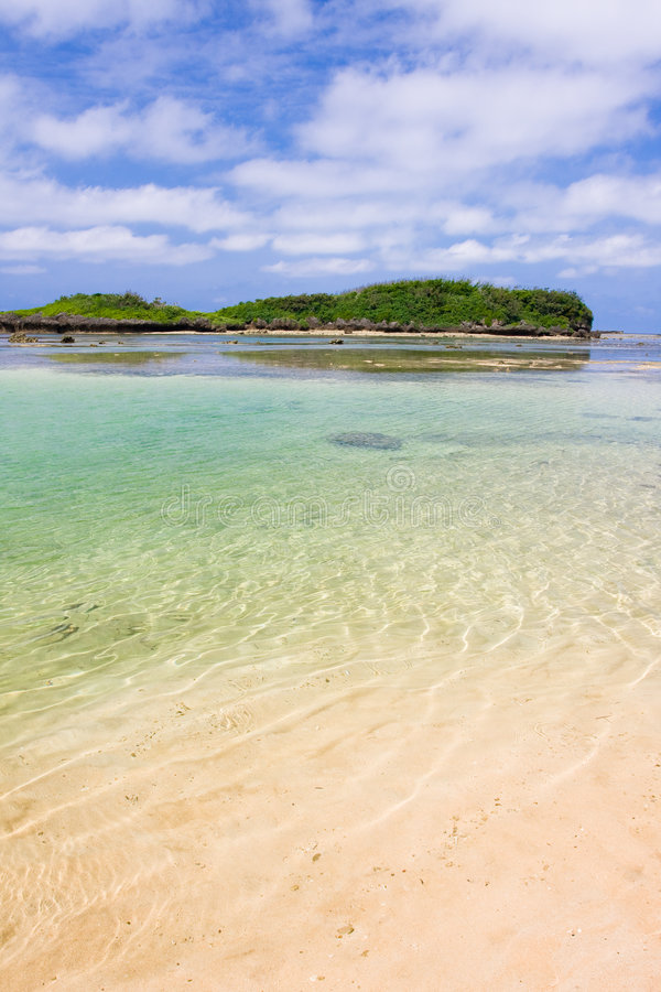 Rochas corais nas águas desobstruídas fotografia de stock royalty free