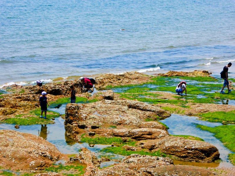 Rochas da praia de banho da cidade de Qingdao fotografia de stock