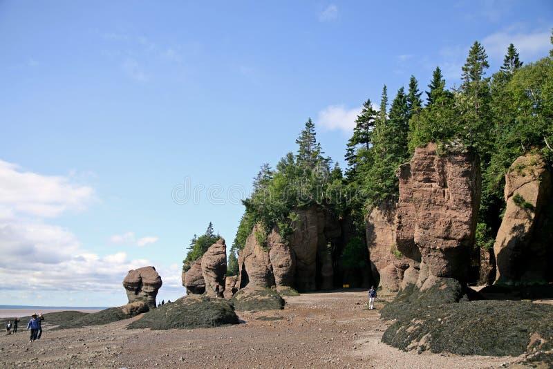 Rochas de Hopewell, Novo Brunswick