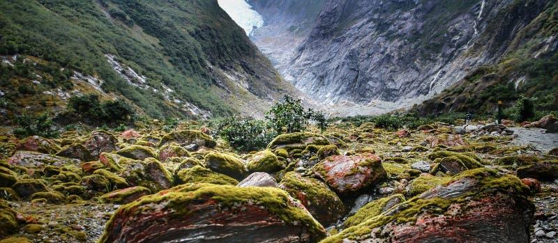 Rochas de Mossy se acumulam no vale sob Franz Josef Glacier na Nova Zelândia's Ilha do Sul fotos de stock