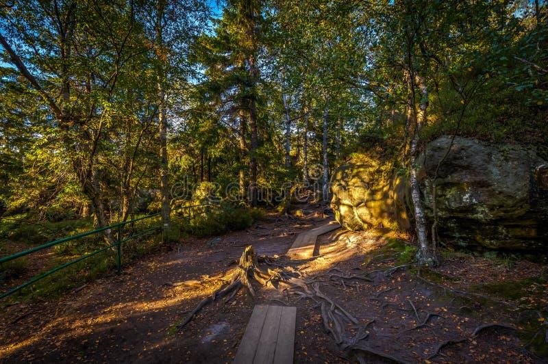 Rochas do arenito na parte superior de montanhas da tabela com passagens de madeira fotos de stock