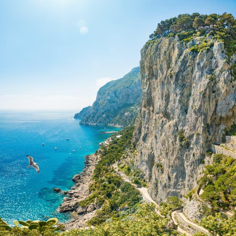 Rochas e mar em Capri, Itália foto de stock