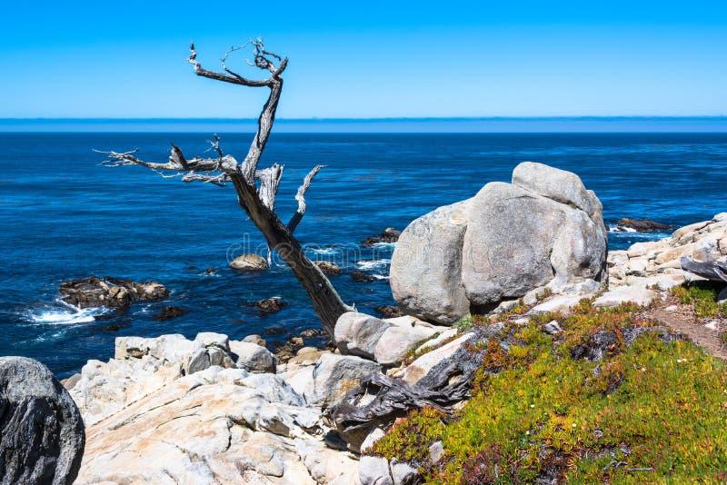 Rochas e oceano da costa de Monterey imagens de stock