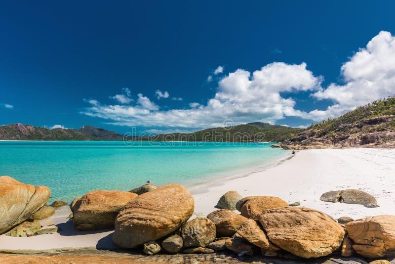 Rochas em surpreender a praia de Whitehaven com a areia branca no de Pentecostes fotos de stock royalty free