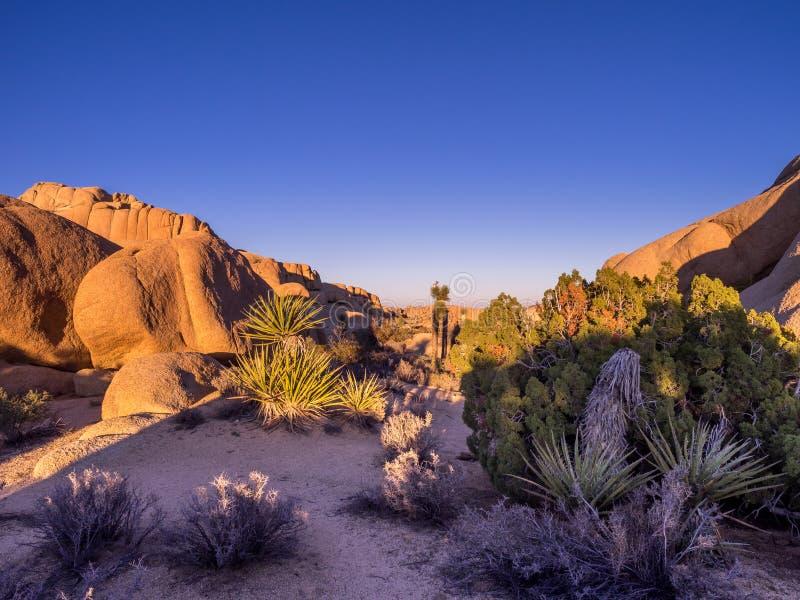 Rochas enormes no por do sol em Joshua Tree National Park imagem de stock royalty free